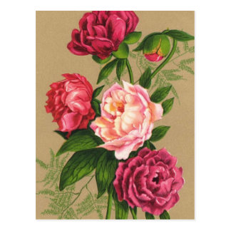 Pink And Red Roses Painting Postcard