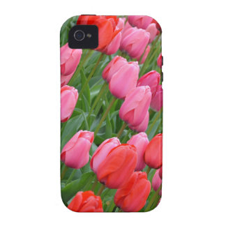 Pink and red spring tulips iPhone 4 case