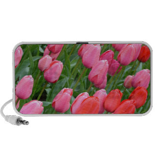 Pink and red spring tulips laptop speaker