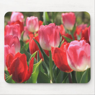 Pink And Red Tulips Mousepads