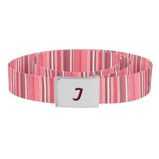 Pink and Stinky Stripes Belt