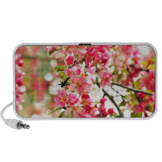 Pink and White Apple Blossoms Mp3 Speakers
