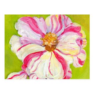 Pink and White Camellia on Lime Green Postcard
