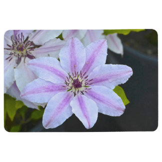 Pink and White Clematis Floor Mat