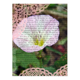 Pink and White Field BindWeed Post Cards