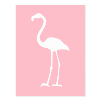 Pink and White Flamingo Postcard