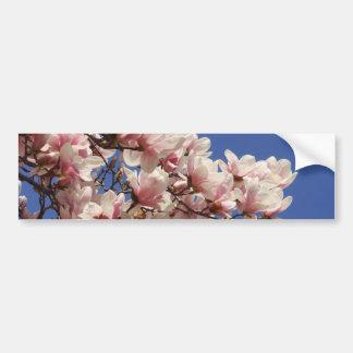 Pink and White Magnolia Bumper Sticker