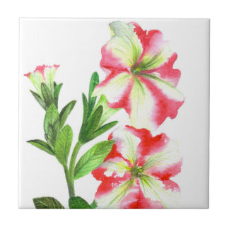 Pink and White Petunias Floral Art Tile