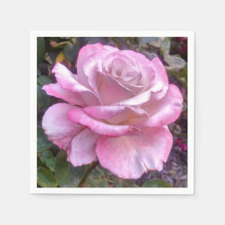 Pink and white Rose on White Cocktail Napkin Paper Napkin
