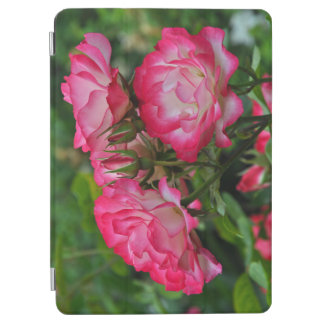 Pink and white roses iPad air cover