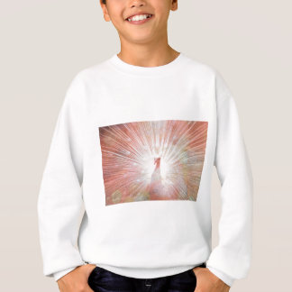 Pink and White Soft Focus Lights Peacock Sweatshirt