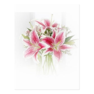 pink and white tiger lilies postcard