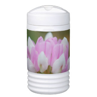 Pink And White Wildflower One Quar Beverage Cooler