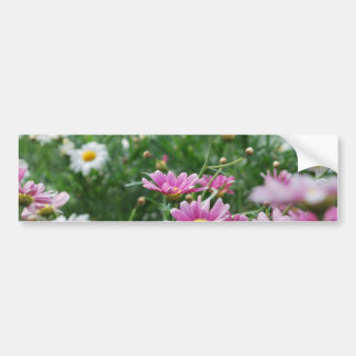 Pink and White Wildflowers Bumper Sticker