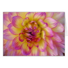 pink and yellow dahlia card