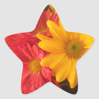 Pink and Yellow Daisies Star Sticker