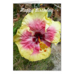 Pink and Yellow Hibiscus Tropical Flower Birthday