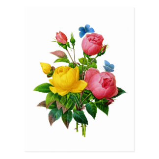 Pink and Yellow Rose Bouquet by Redoute Postcard