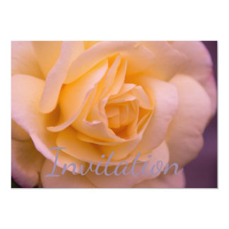 Pink And Yellow Rose Closeup 13 Cm X 18 Cm Invitation Card