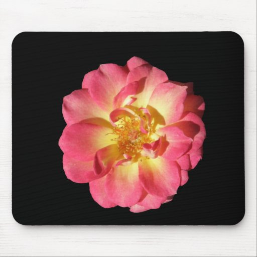 Pink And Yellow Rose Mouse Mat