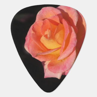 Pink and Yellow Roses Plectrum