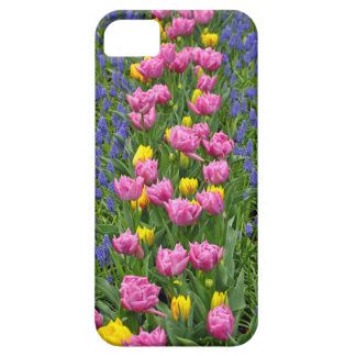 Pink and yellow spring tulips iPhone 5 covers