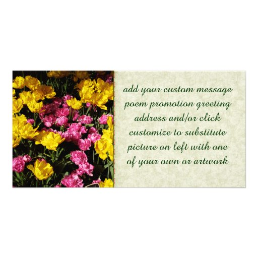 Pink and Yellow Tulips Customized Photo Card