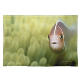 Pink Anemone Fish Placemat