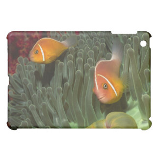 Pink Anemonefish in Magnificant Sea Anemone iPad Mini Case