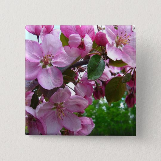Pink Apple Blossoms 15 Cm Square Badge