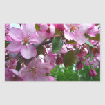 Pink Apple Blossoms Rectangle Stickers