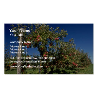 Pink Apple orchard flowers Business Card