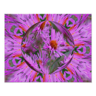 Pink Aster Flower Energies Abstract Posters