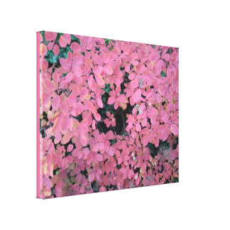 Pink Autumn Tree Leaves Canvas Print