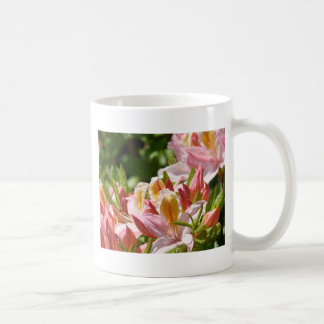 PINK AZALEA FLOWERS 6 Azaleas Cards Gifts Mugs