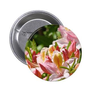 PINK AZALEA FLOWERS 6 Azaleas Cards Gifts Mugs Pins