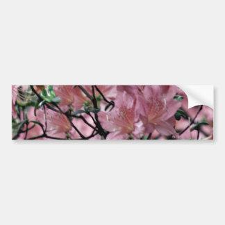 Pink Azalea flowers Bumper Sticker