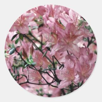 Pink Azalea flowers Round Stickers