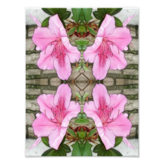 Pink Azaleas 1E kaleidoscope 6 Photograph