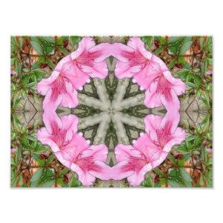 Pink Azaleas 1E kaleidoscope 8 Photograph