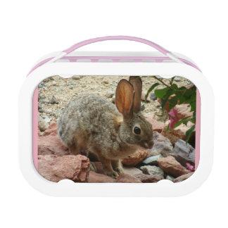 Pink Baby Bunny Yubo Lunchbox