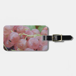 Pink Berry Bag Tag