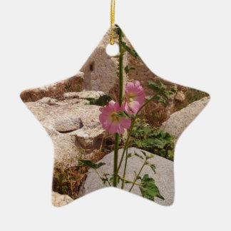 Pink Bindweed Ceramic Star Decoration