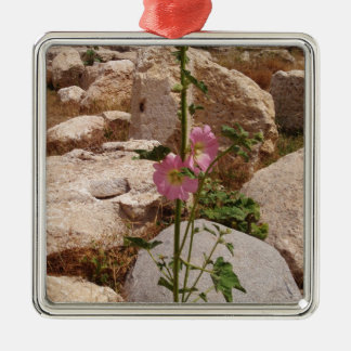 Pink Bindweed Silver-Colored Square Decoration