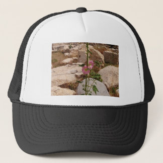 Pink Bindweed Trucker Hat