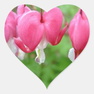 Pink Bleeding Heart Heart Sticker
