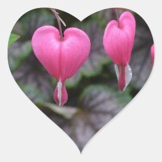 Pink Bleeding Hearts Heart Sticker