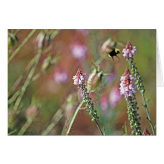 Pink Blooms and Bumble Bee Greeting Card
