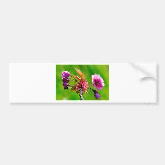 Pink blooms in spring car bumper sticker