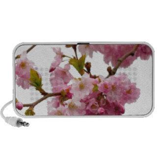 Pink Blossom Flowers iPod Speaker